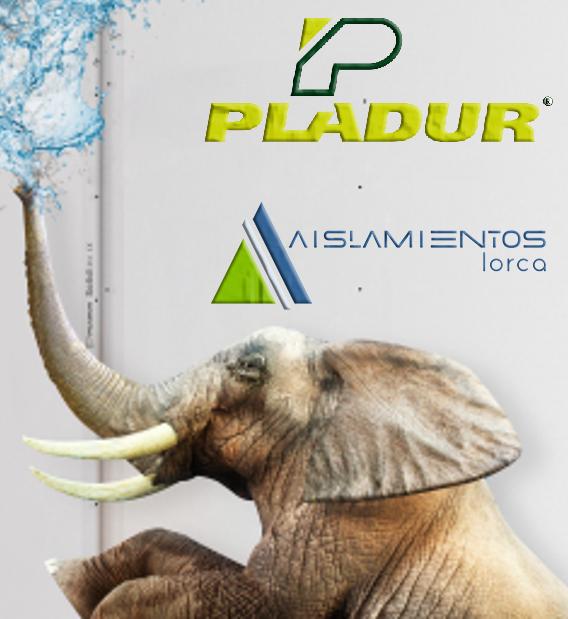IMAGEN ELEFANTE Pladur® Solidtex AISLAMIENTOS LORCA
